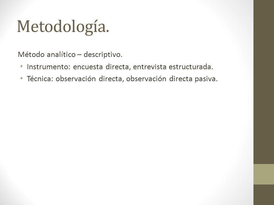Metodología. Método analítico – descriptivo.