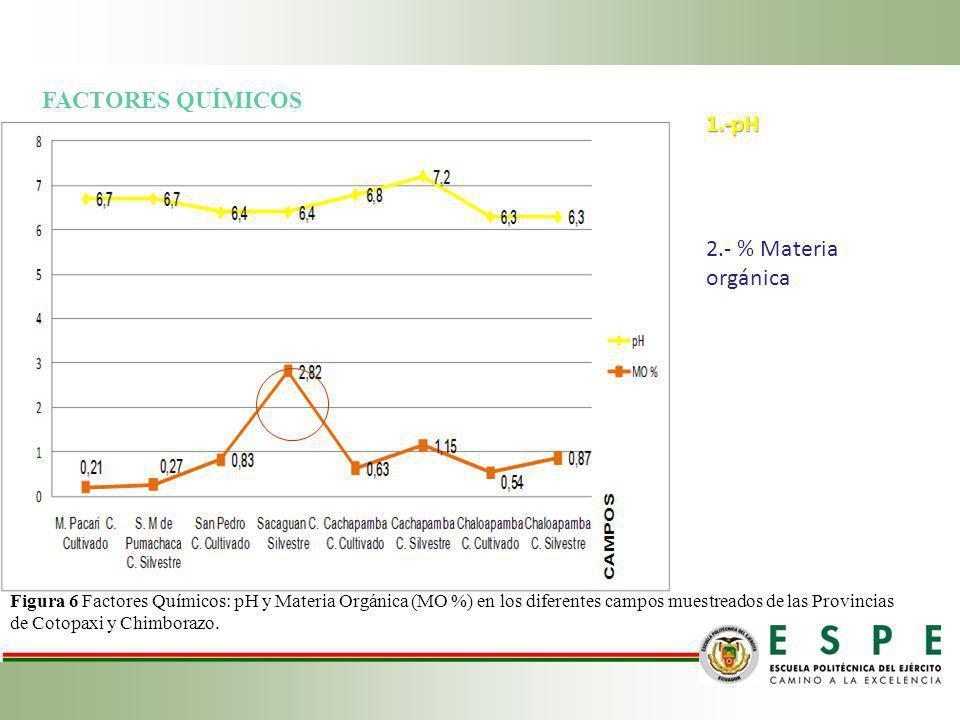FACTORES QUÍMICOS 1.-pH 2.- % Materia orgánica