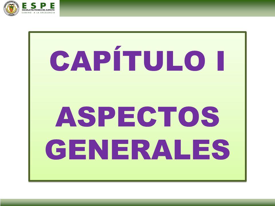 CAPÍTULO I ASPECTOS GENERALES