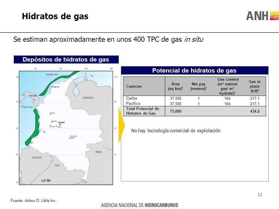 Hidratos de gas Se estiman aproximadamente en unos 400 TPC de gas in situ. Depósitos de hidratos de gas.