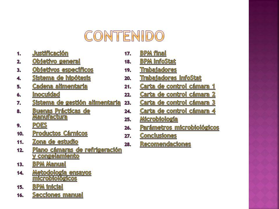 contenido Justificación BPM final Objetivo general BPM InfoStat