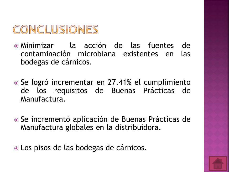 Conclusiones Minimizar la acción de las fuentes de contaminación microbiana existentes en las bodegas de cárnicos.