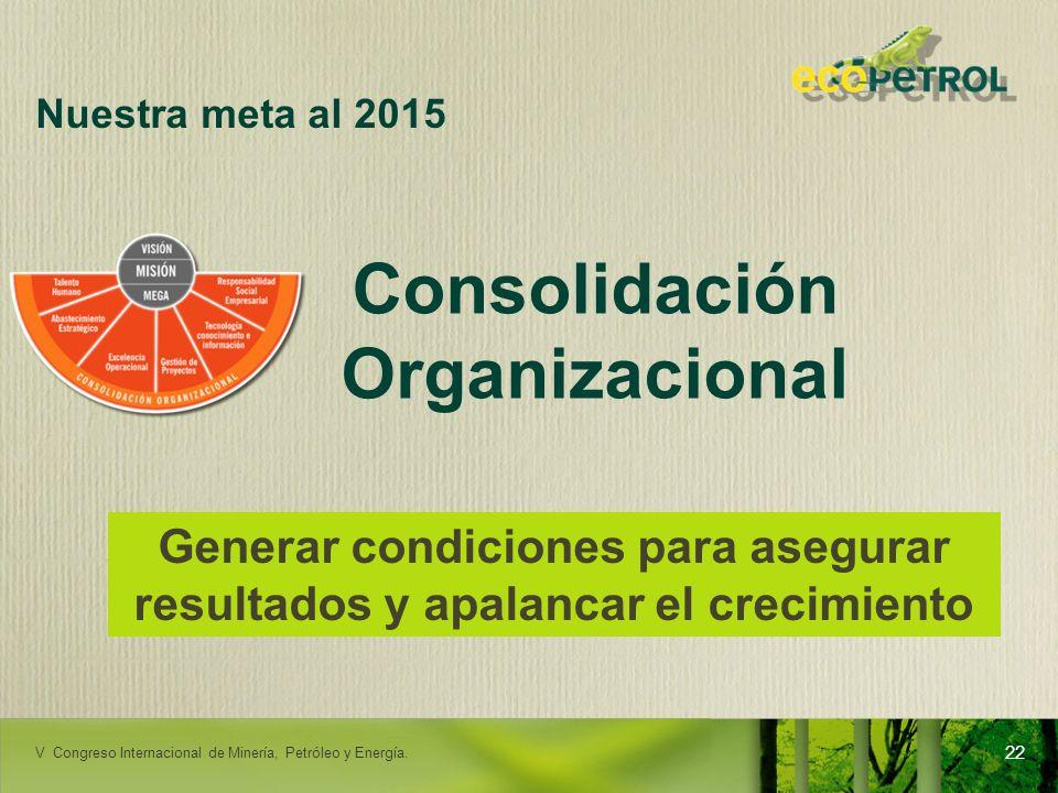 Consolidación Organizacional