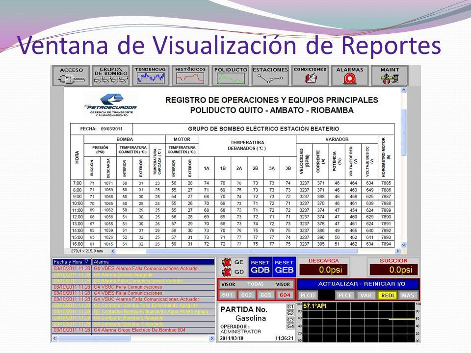 Ventana de Visualización de Reportes