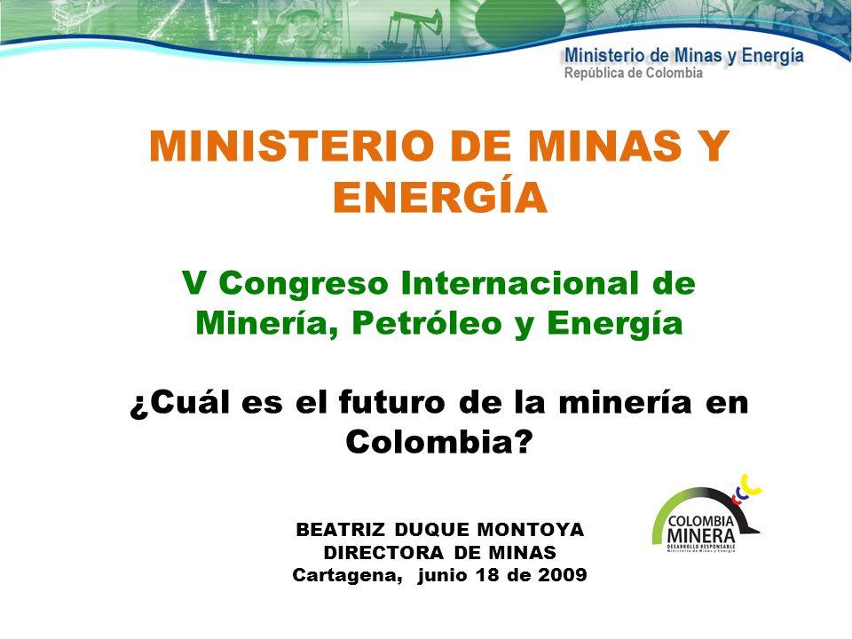 MINISTERIO DE MINAS Y ENERGÍA V Congreso Internacional de Minería, Petróleo y Energía ¿Cuál es el futuro de la minería en Colombia.