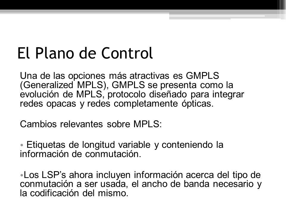 El Plano de Control
