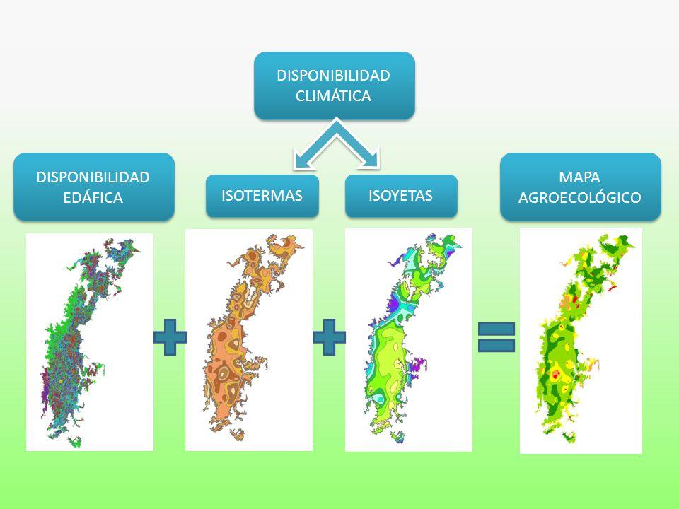 DISPONIBILIDAD CLIMÁTICA