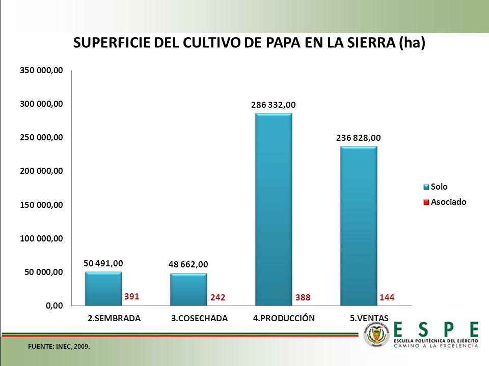 SUPERFICIE DEL CULTIVO DE PAPA EN LA SIERRA (ha)
