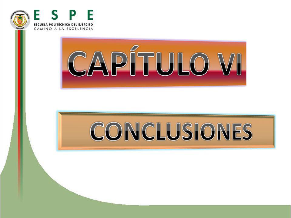 CAPÍTULO VI CONCLUSIONES