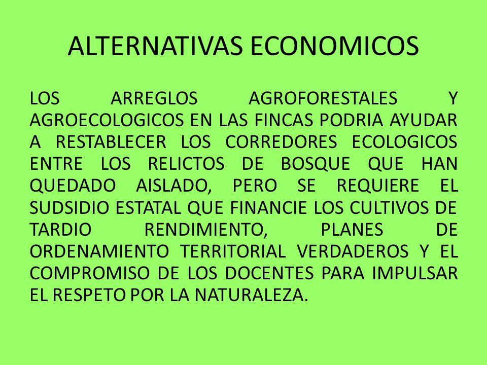 ALTERNATIVAS ECONOMICOS