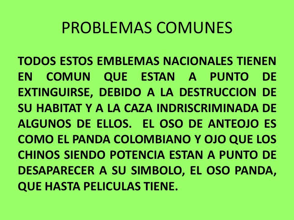 PROBLEMAS COMUNES
