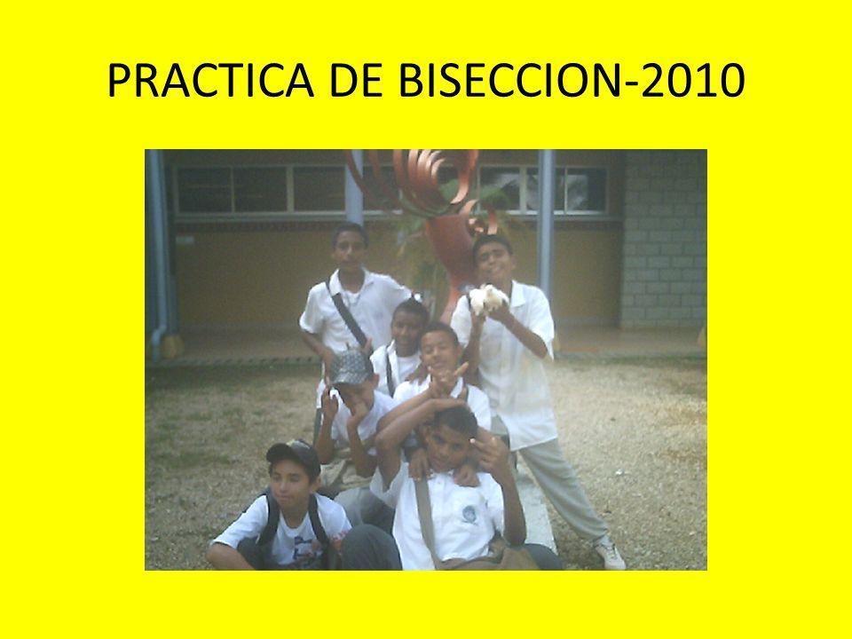 PRACTICA DE BISECCION-2010