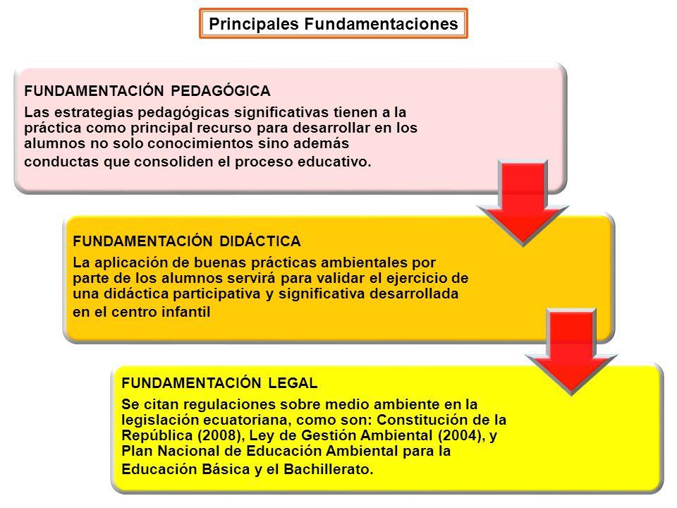 Principales Fundamentaciones