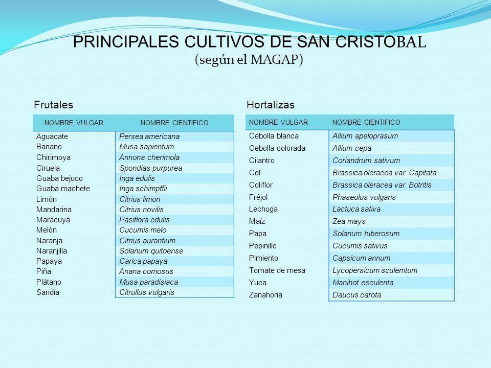 PRINCIPALES CULTIVOS DE SAN CRISTOBAL (según el MAGAP)