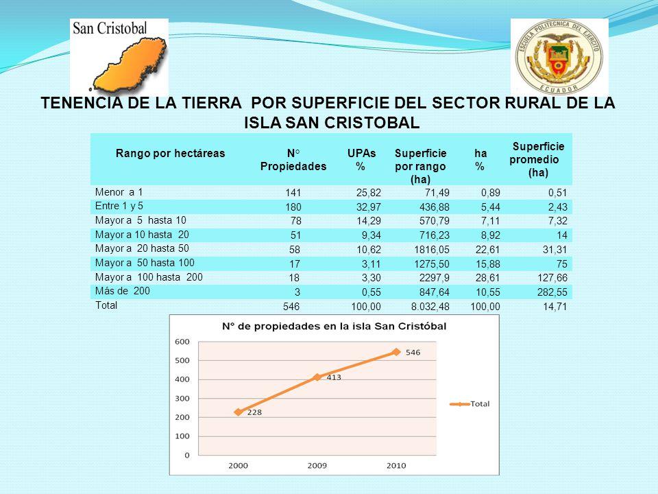 TENENCIA DE LA TIERRA POR SUPERFICIE DEL SECTOR RURAL DE LA
