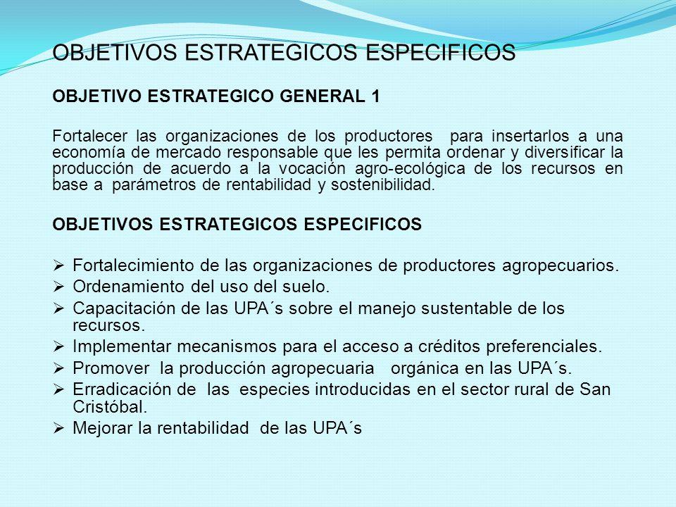 OBJETIVOS ESTRATEGICOS ESPECIFICOS