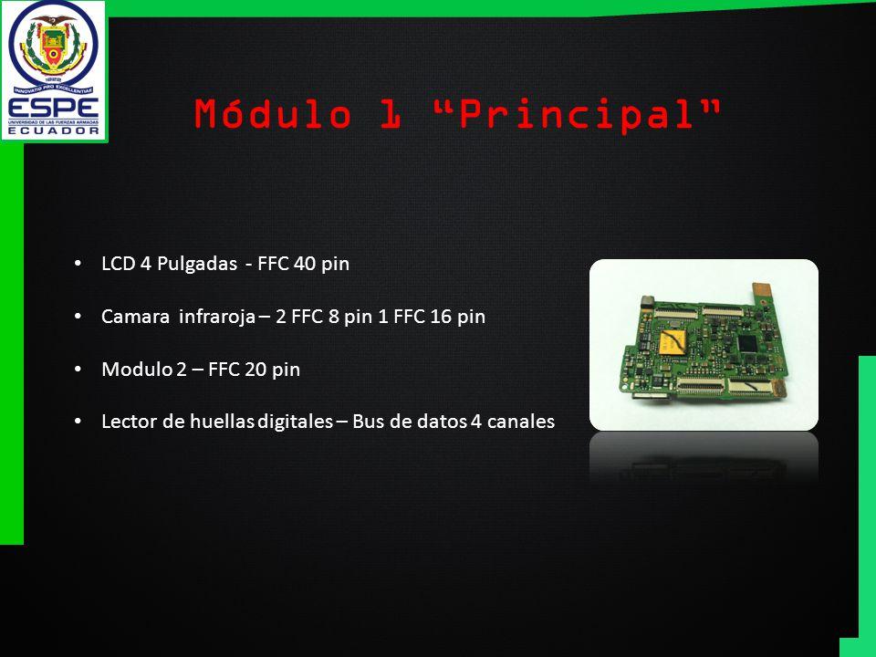 Módulo 1 Principal LCD 4 Pulgadas - FFC 40 pin
