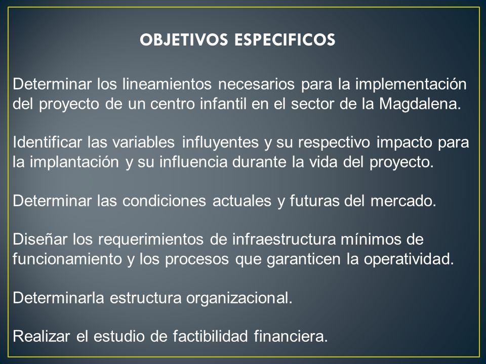 Determinar los lineamientos necesarios para la implementación