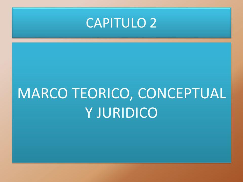 MARCO TEORICO, CONCEPTUAL Y JURIDICO