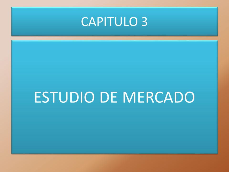 CAPITULO 3 ESTUDIO DE MERCADO