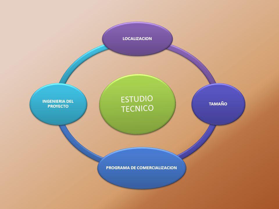 PROGRAMA DE COMERCIALIZACION INGENIERIA DEL PROYECTO