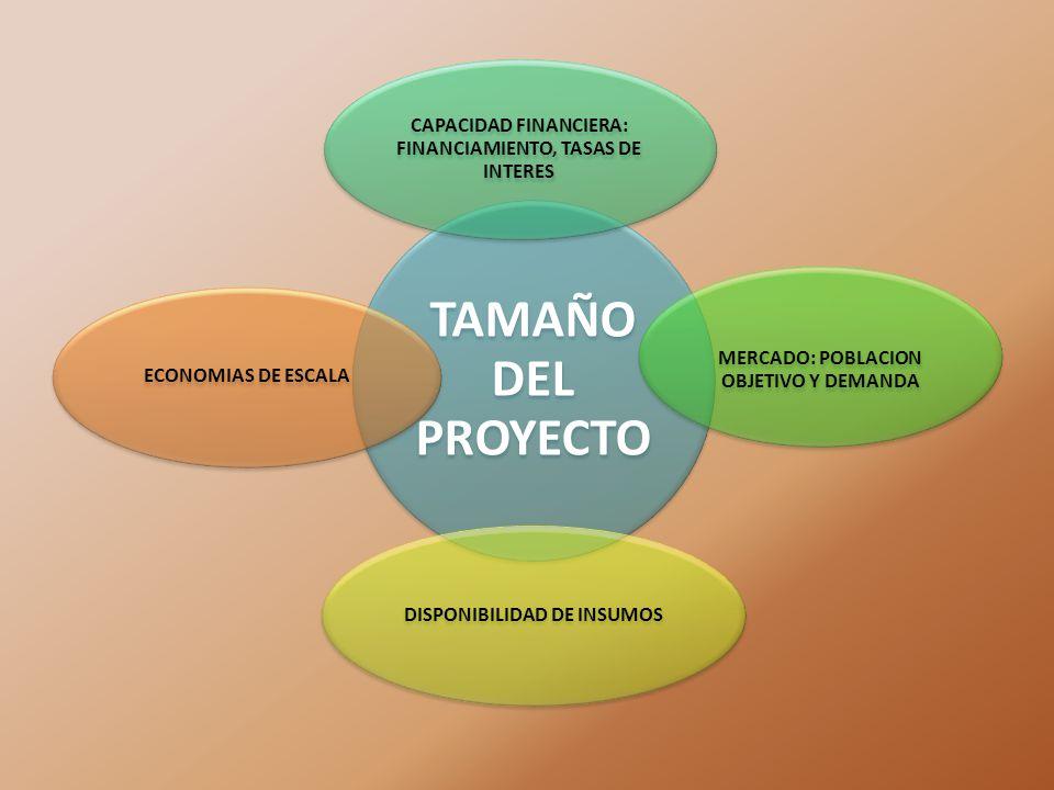TAMAÑO DEL PROYECTO CAPACIDAD FINANCIERA: FINANCIAMIENTO, TASAS DE INTERES. MERCADO: POBLACION OBJETIVO Y DEMANDA.