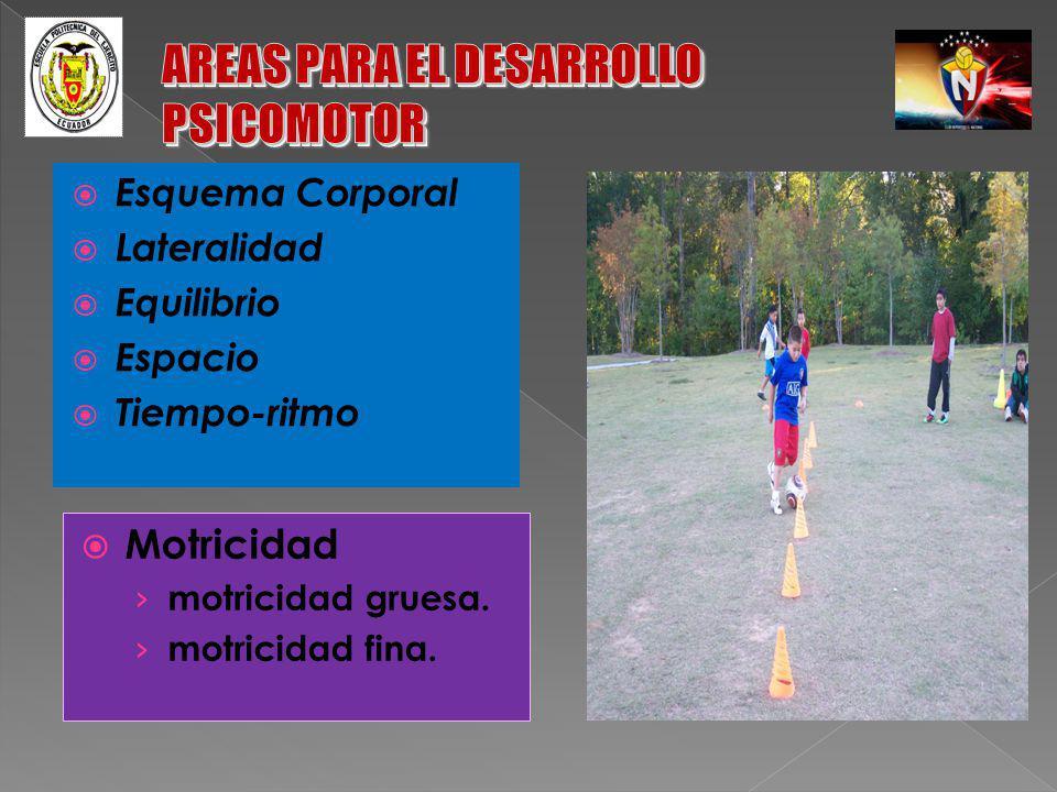 AREAS PARA EL DESARROLLO PSICOMOTOR