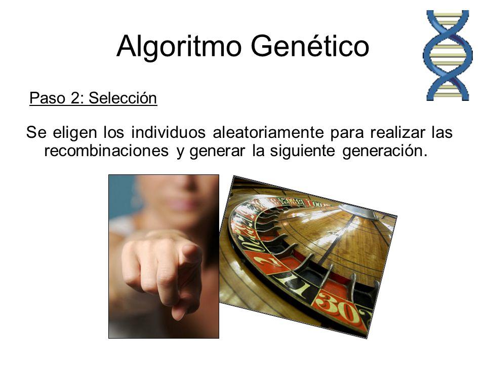 Algoritmo Genético Paso 2: Selección. Se eligen los individuos aleatoriamente para realizar las recombinaciones y generar la siguiente generación.
