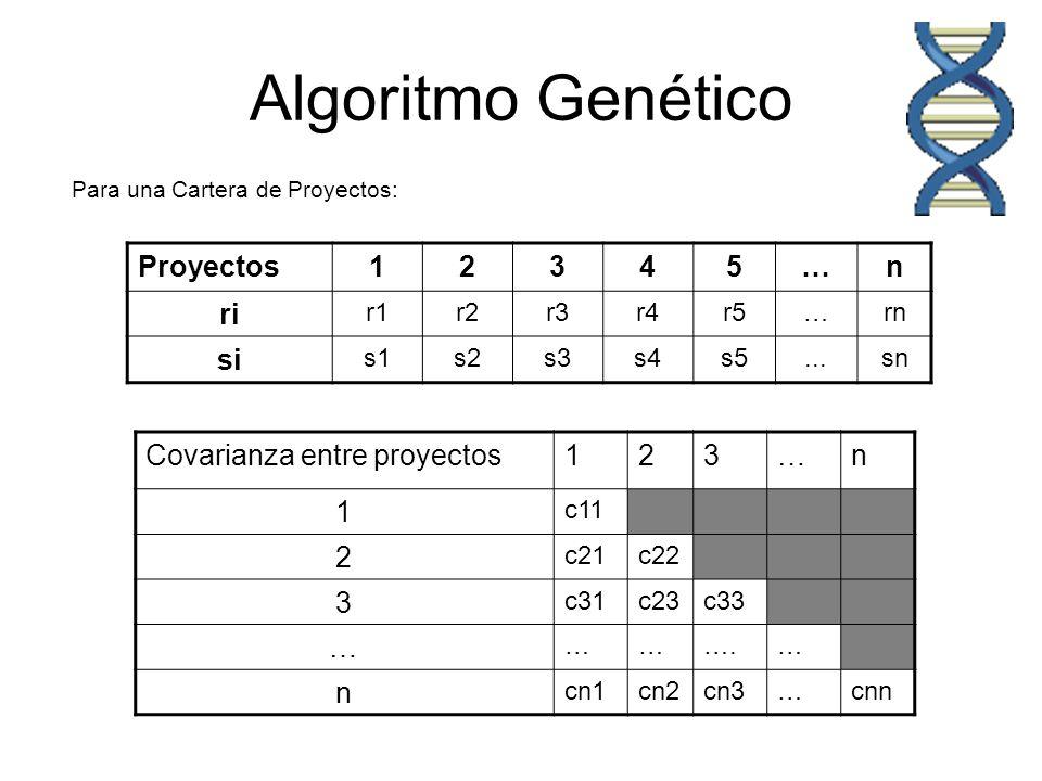 Algoritmo Genético Proyectos 1 2 3 4 5 … n ri si