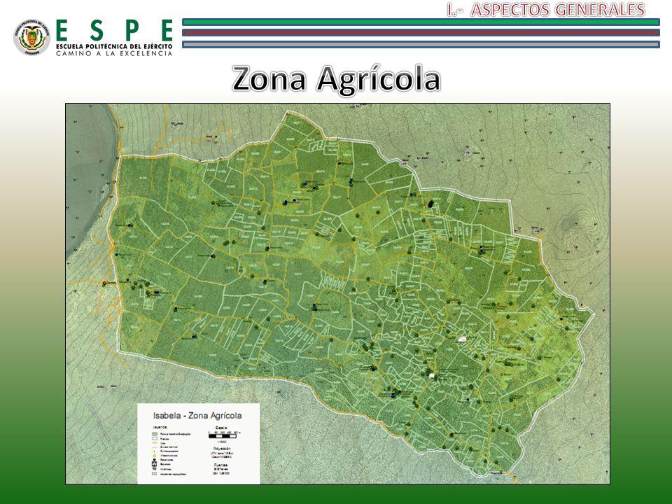 I.- ASPECTOS GENERALES Zona Agrícola