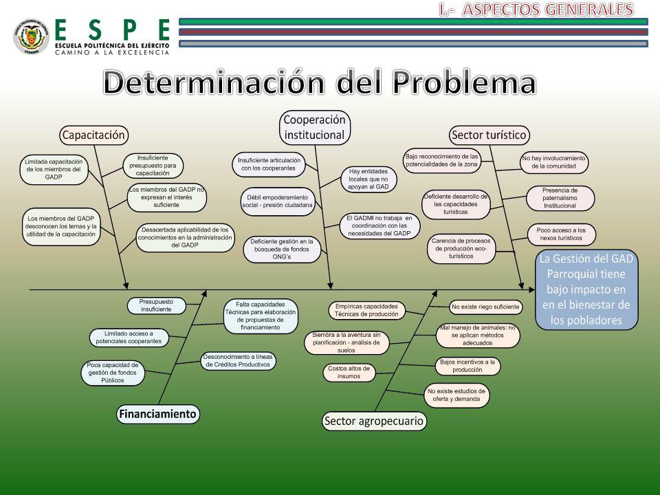 Determinación del Problema