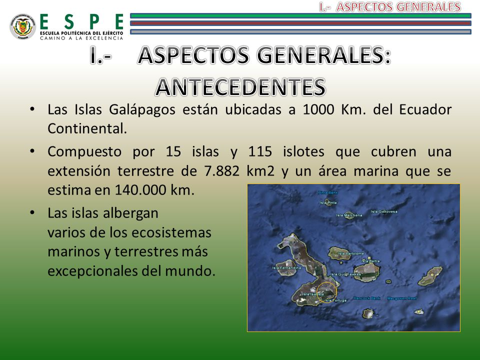 I.- ASPECTOS GENERALES: ANTECEDENTES