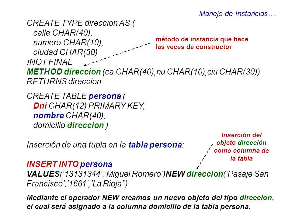 Inserción del objeto dirección como columna de la tabla