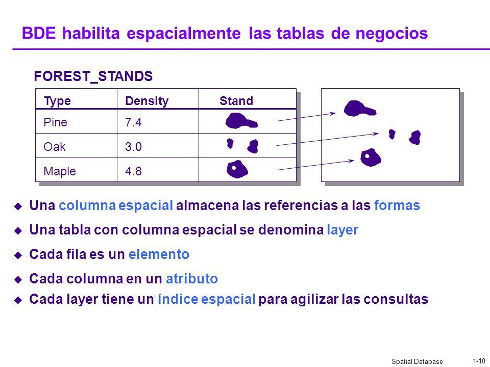 BDE habilita espacialmente las tablas de negocios