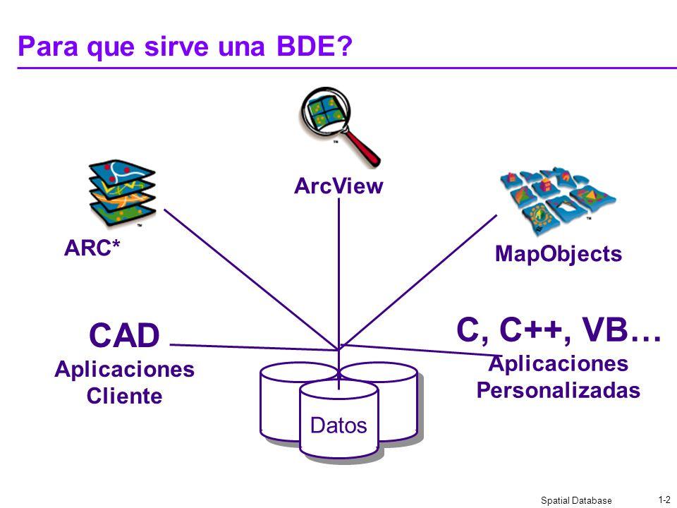 C, C++, VB… CAD Para que sirve una BDE ArcView ARC* MapObjects