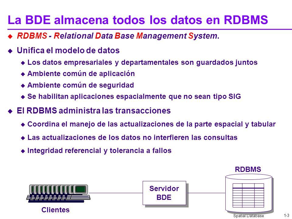 La BDE almacena todos los datos en RDBMS