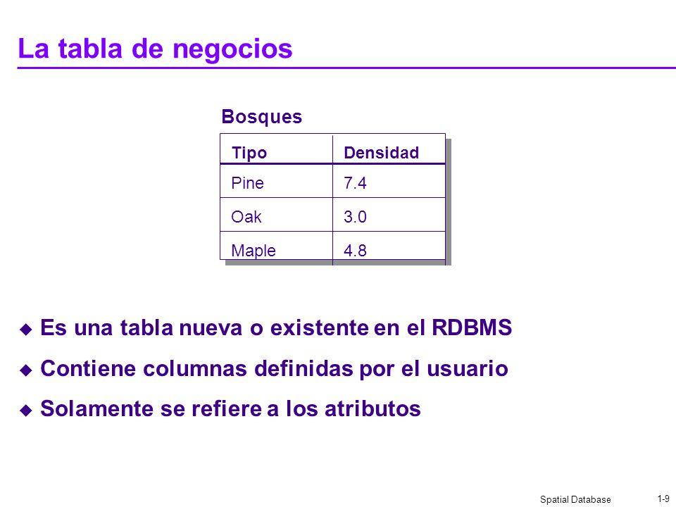 La tabla de negocios Es una tabla nueva o existente en el RDBMS
