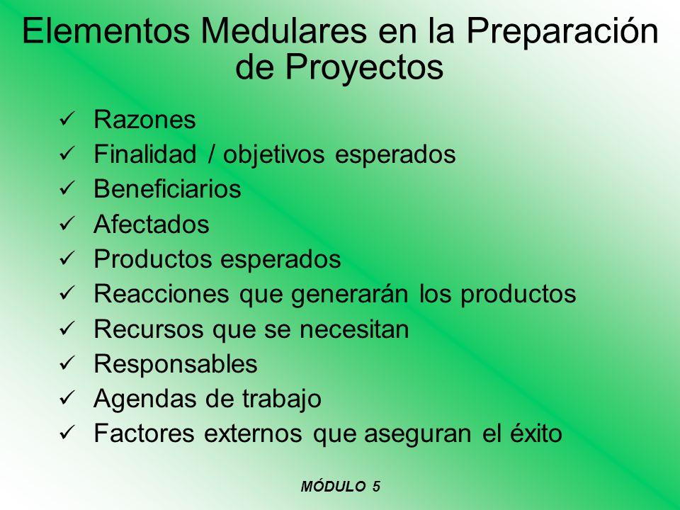 Elementos Medulares en la Preparación de Proyectos