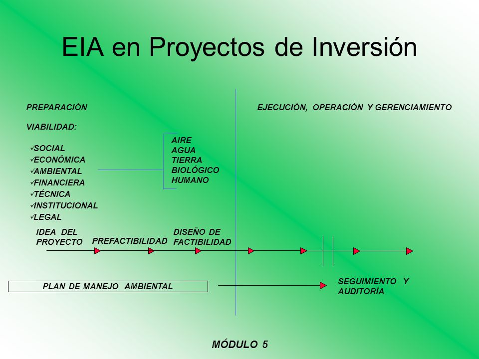 EIA en Proyectos de Inversión