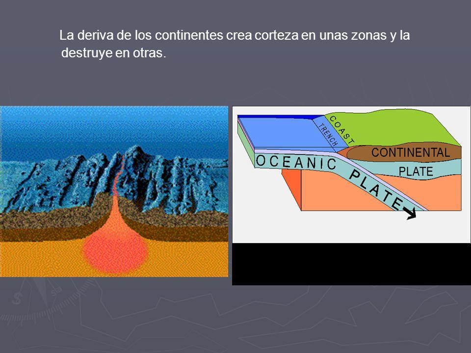 La deriva de los continentes crea corteza en unas zonas y la destruye en otras.