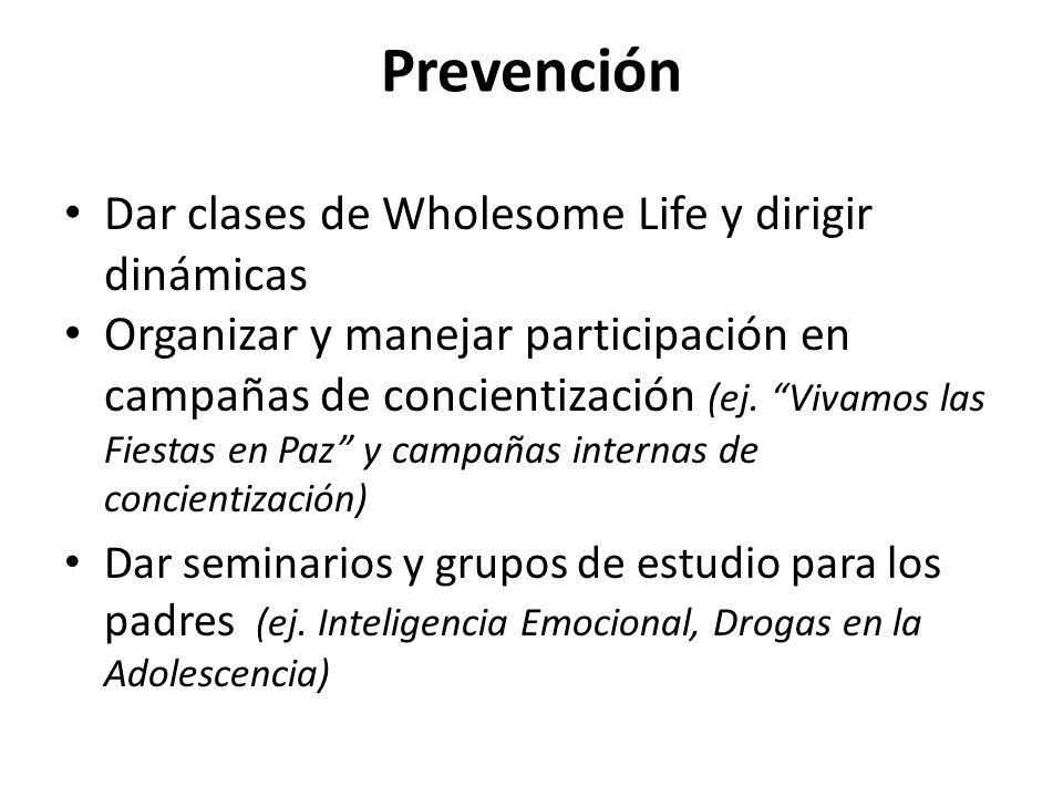 Prevención Dar clases de Wholesome Life y dirigir dinámicas