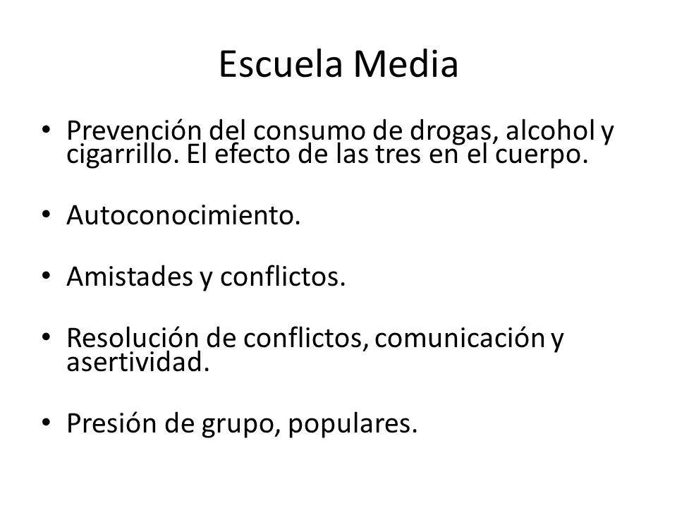 Escuela Media Prevención del consumo de drogas, alcohol y cigarrillo. El efecto de las tres en el cuerpo.