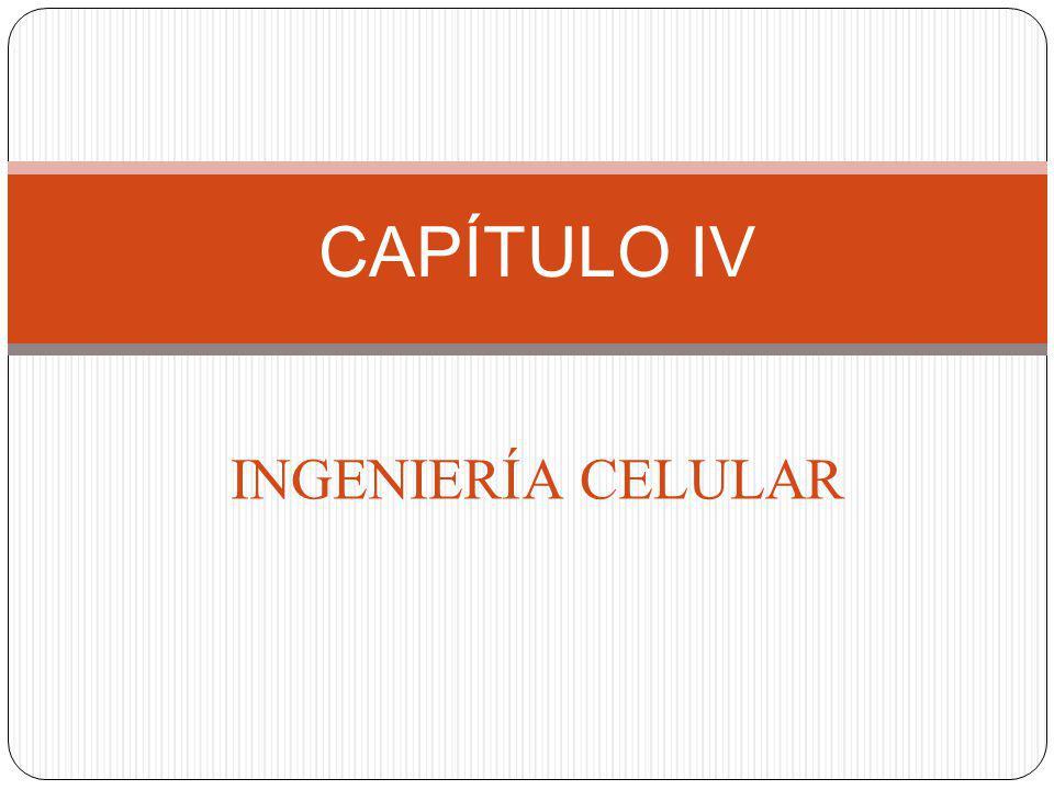 CAPÍTULO IV INGENIERÍA CELULAR