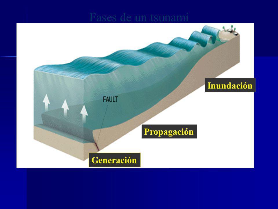 Fases de un tsunami Inundación Propagación Generación