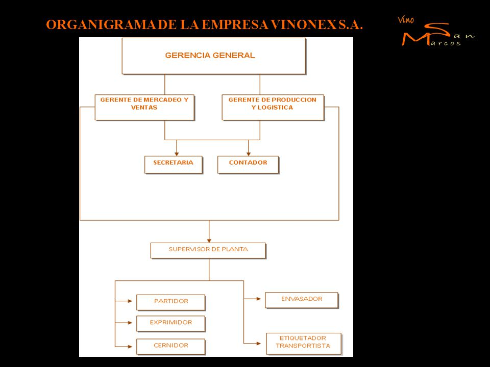 ORGANIGRAMA DE LA EMPRESA VINONEX S.A.