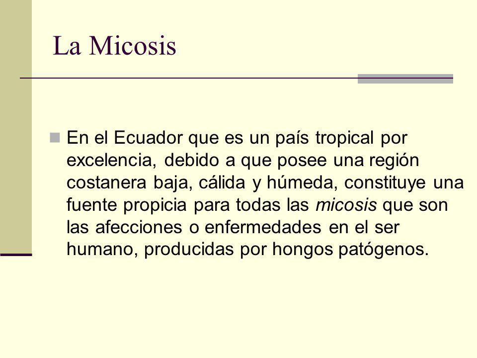 La Micosis