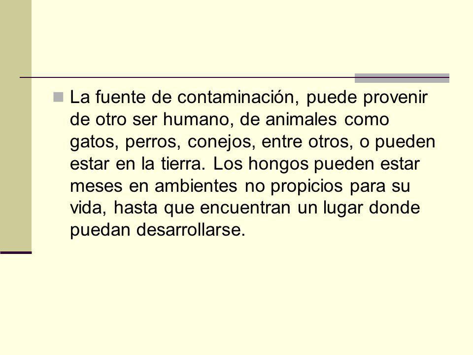 La fuente de contaminación, puede provenir de otro ser humano, de animales como gatos, perros, conejos, entre otros, o pueden estar en la tierra.
