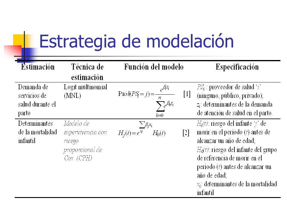 Estrategia de modelación