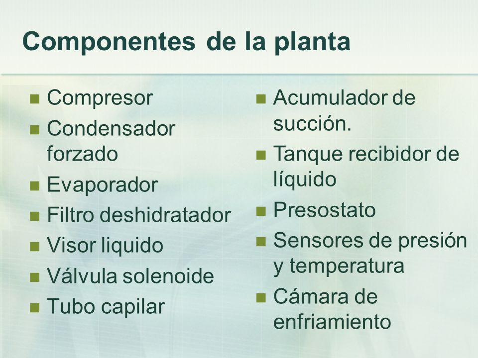 Componentes de la planta