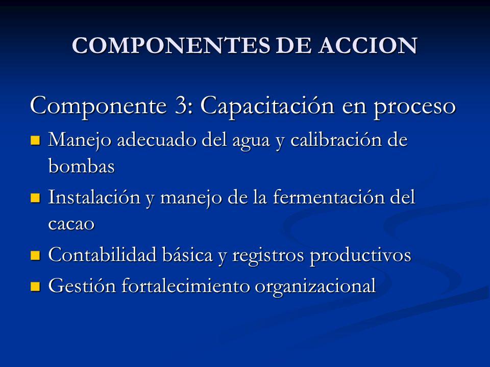 Componente 3: Capacitación en proceso